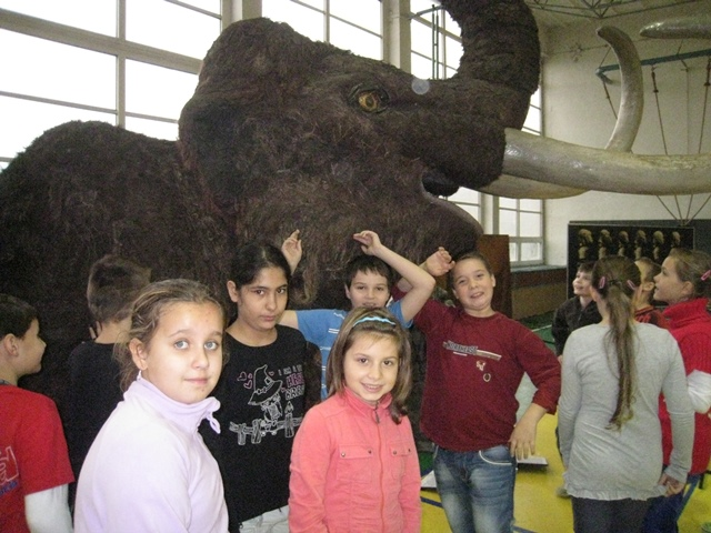 mamut_31